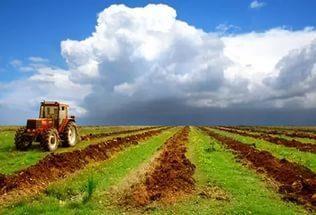 сельхоз