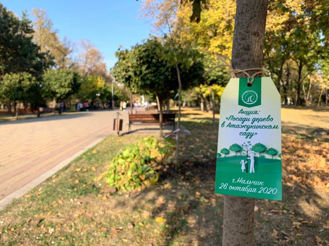 Акция «Посади дерево в Атажукинском саду» прошла в городском парке